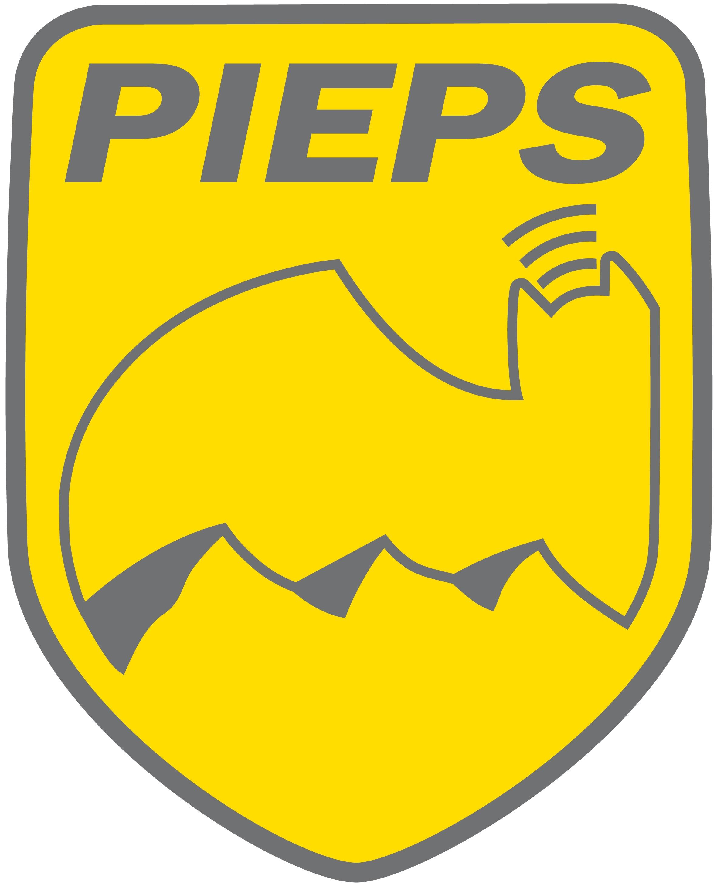 Pieps Powder BT