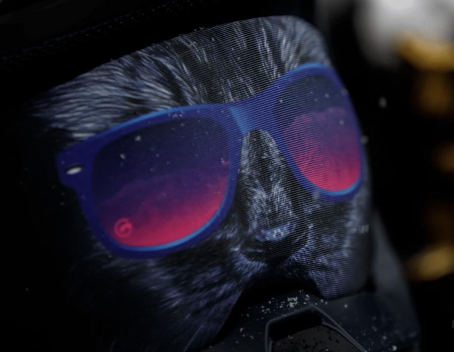 Gogglesoc - Bad Kitty